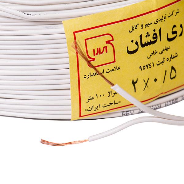 REY AFSHAN wire 0.5  2 (4)_.jpg